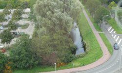 Stadswijkgesprek - Driemanspolder